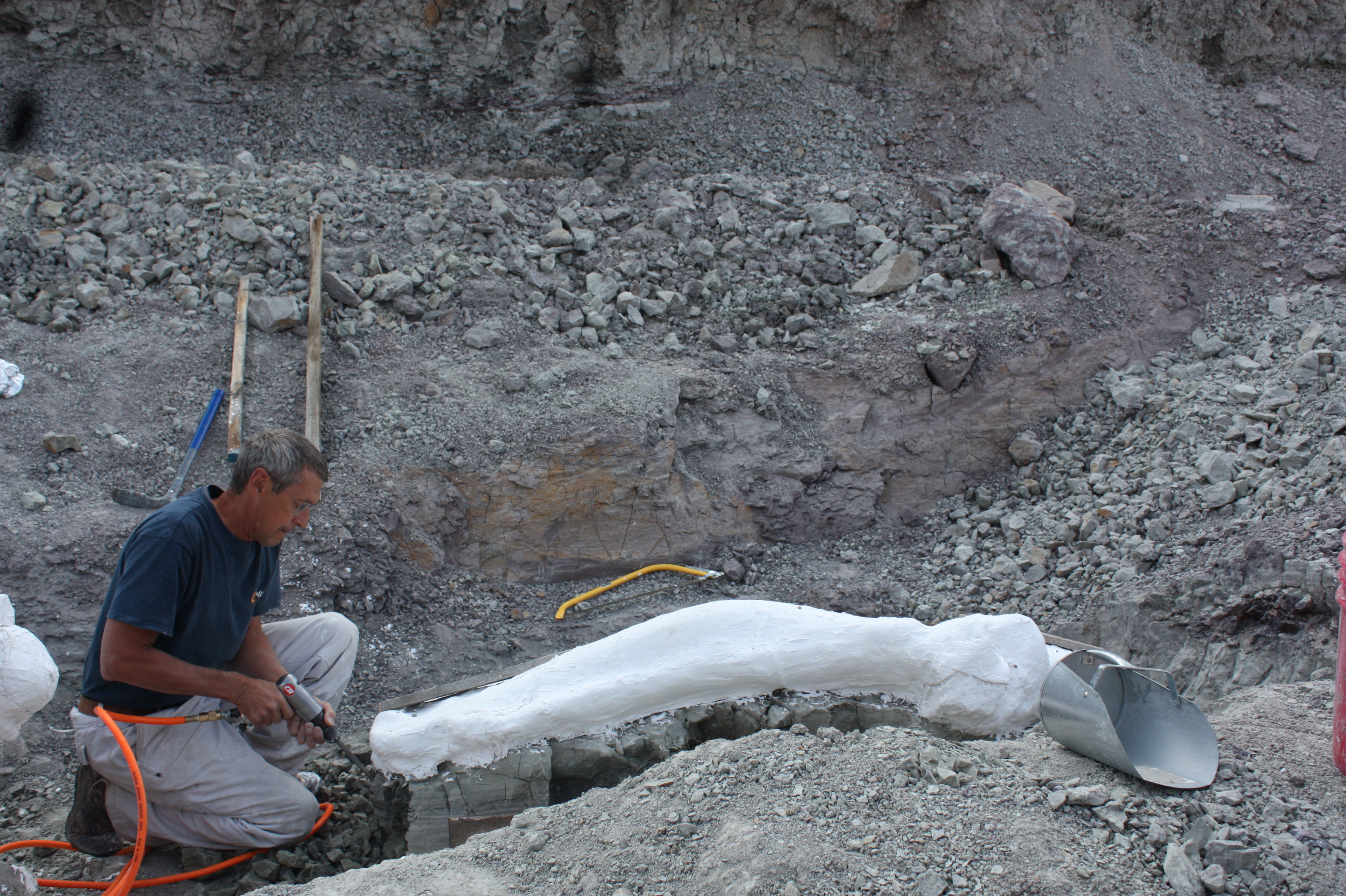 At work in our Jurassic dinosaur quarry