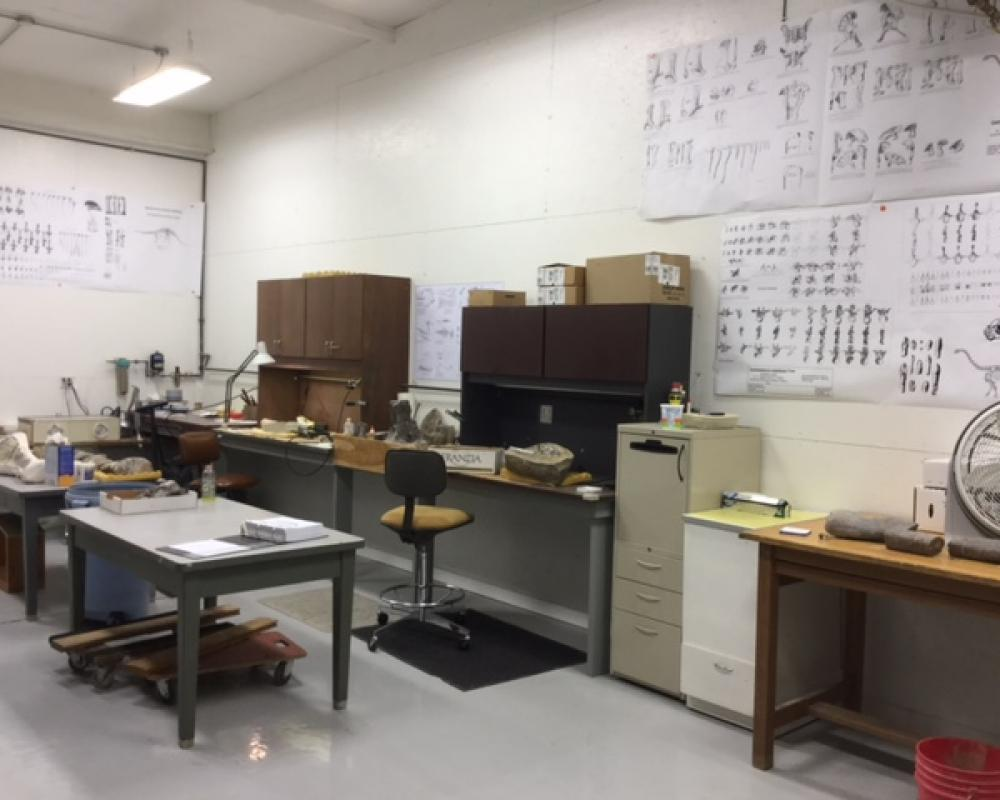 Part of our preparation laboratory