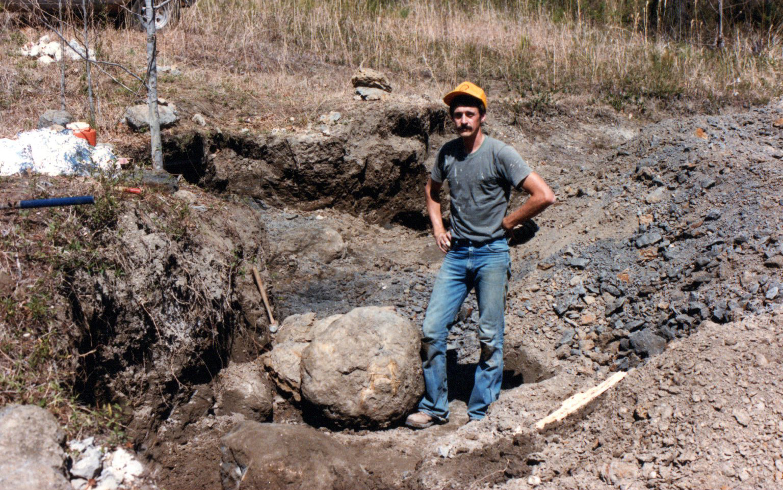 Very large concretion with multiple Upper Cretaceous crab fossils inside